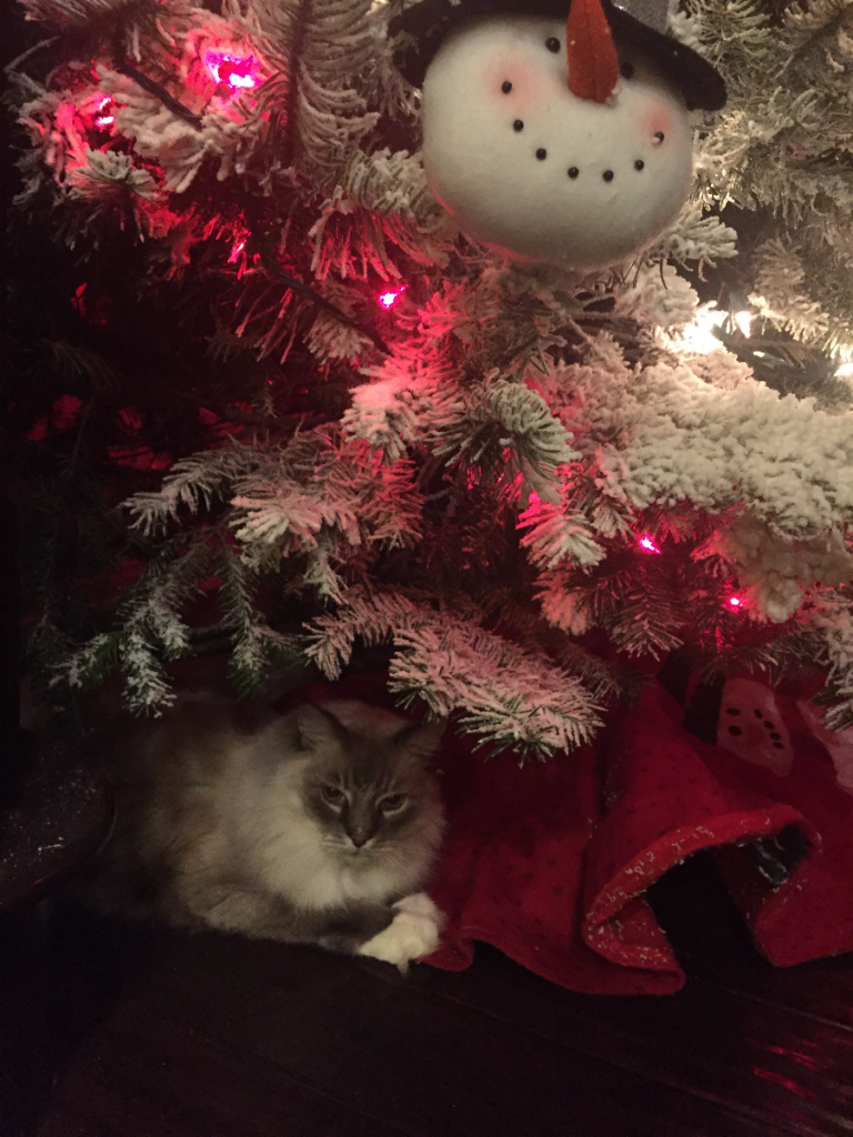 !Diesel under the Christmas Tree